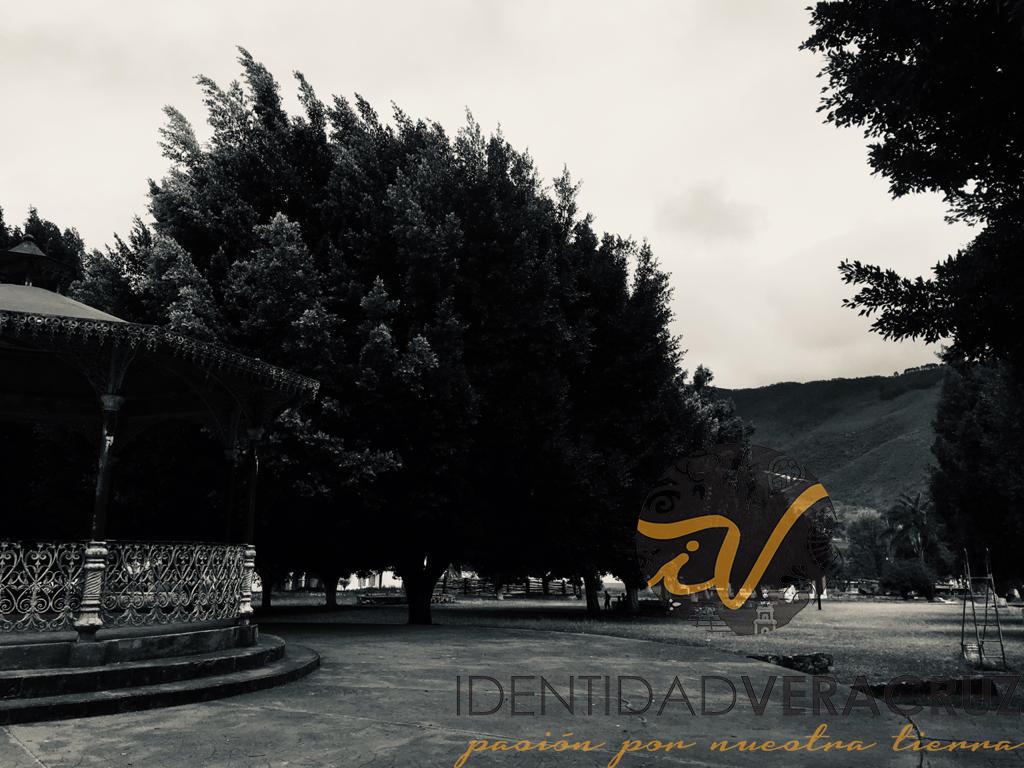 Foto: Identidad Veracruz